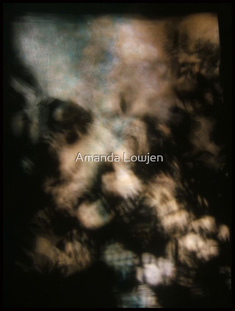 heirloom by Amanda Lowjen