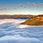 More Cotton Wool by Andrew Bosman