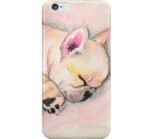 Sleeping Frenchie iPhone Case/Skin
