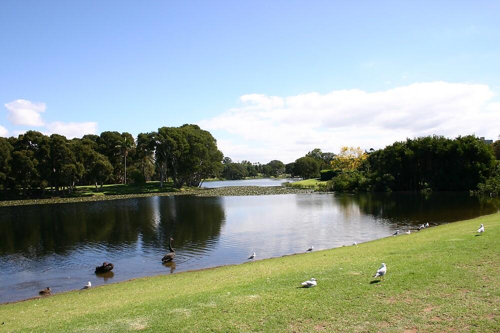 Centenial Park by Corey Mingari