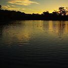 Colleges Sunset by Heath Carney