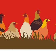 chooks by Matt Mawson