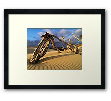 Deadwood Framed Print