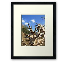 Dont Touch Framed Print