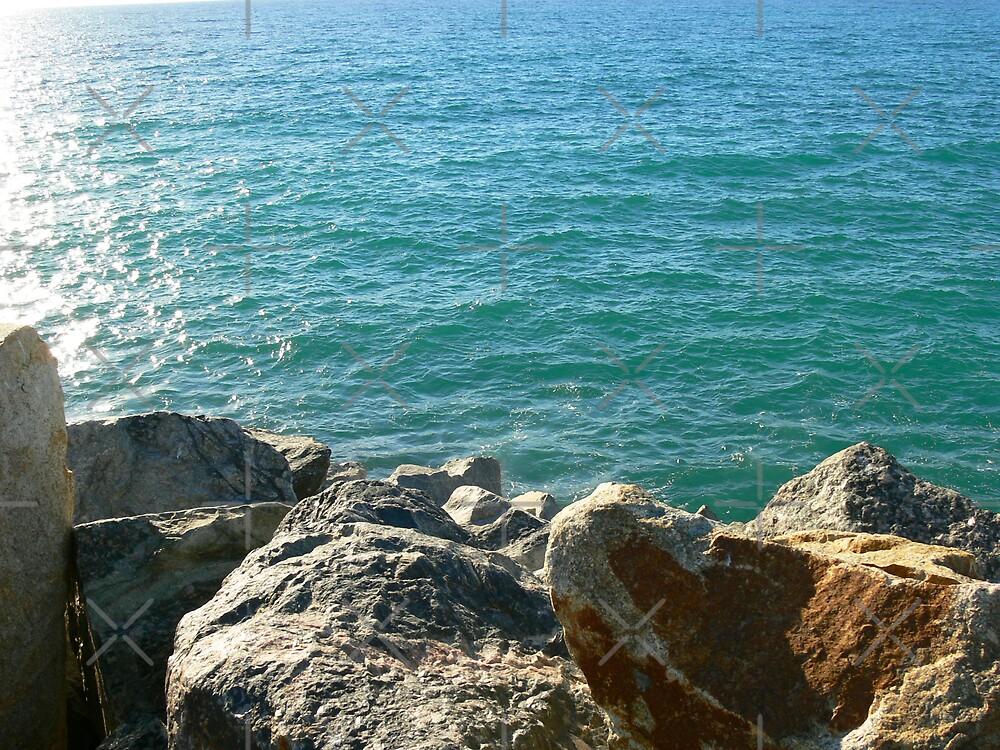 Port Beach by Sandra Chung