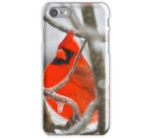 Red Northern Cardinal Birds iPhone Case/Skin