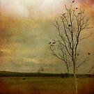 The Road to Culburra by Lea Hawkins