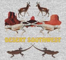 DESERT SOUTHWEST by Sandy O'Toole