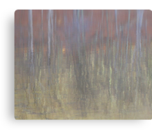 Winter Water on a Quiet Morning Canvas Print