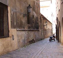 Streets Of Prague by Samara  Lee