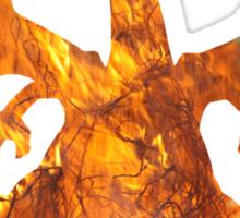 Charizard used Blast Burn Sticker