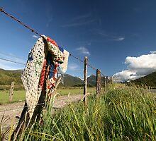Blanket on remote fence by bevan