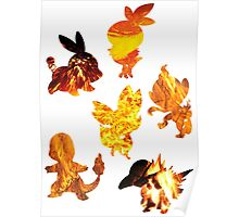 Fire Type Starters  Poster