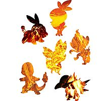 Fire Type Starters  Photographic Print