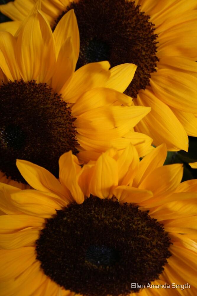 Sunny Days by Ellen Amanda Smyth