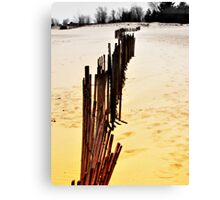 Imaginary Boundries  Canvas Print