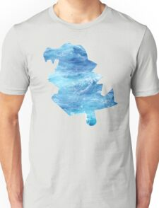 Totodile used Surf Unisex T-Shirt