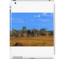 African Dream - kindly donated by Audrey Sohikian - Research Intern iPad Case/Skin
