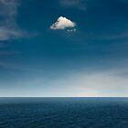 Silence in the air by yurybird