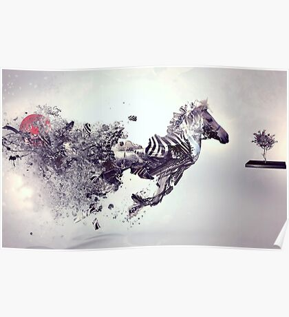 Zebra Abstract designs Poster