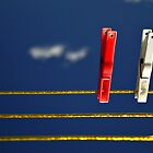 Pegs in Space by Melody