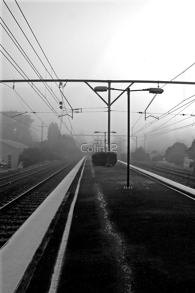 Foggy morning by Colin12
