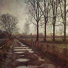 The Old Bridleway by Sarah Jarrett