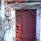 Red Vine Door by Samara  Lee