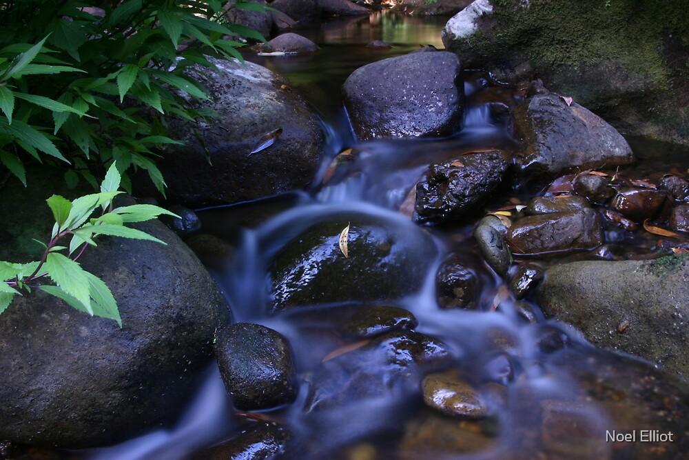Bugong Creek by Noel Elliot