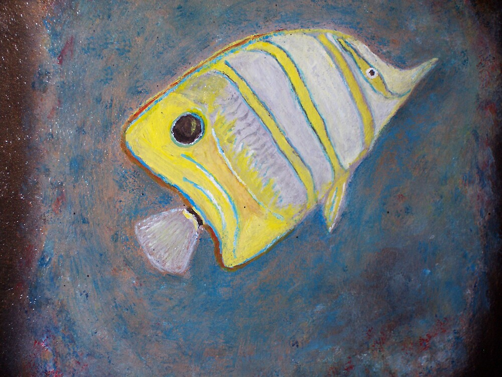Reef Angel by John Mikkelsen