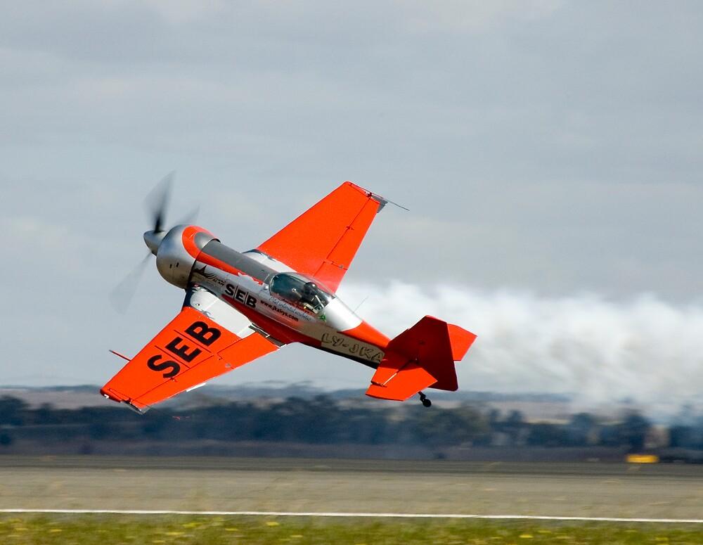 Crazy men in their flying machines by Bevan Anderson