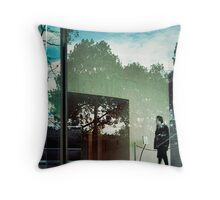 a fantastic but vain hope Throw Pillow