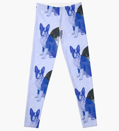Boston Terrier stencils in Blue Leggings