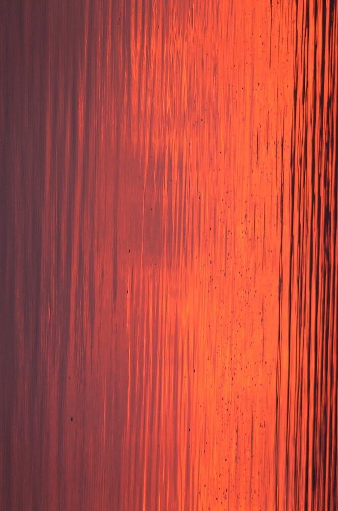 Reflections 2 by Tara Chiu