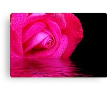 Rose reflected in water Canvas Print