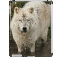 Find your courage iPad Case/Skin