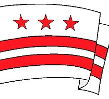 Washington DC Flag by kwg2200