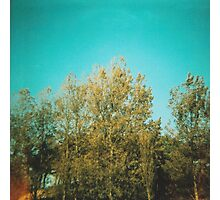 Blue Blue Sky Photographic Print