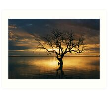 Tree of Silence, Coongie Lake  Art Print