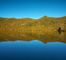 Lake Lilla Reflects by Neil