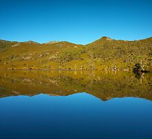 Lake Lilla Reflects by Neil