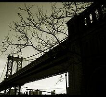 New york angles by Lee Burgess