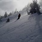 heavenly skiing by Hawk