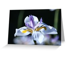 The beauty of nature is what you can make of it... Greeting Card