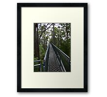 Into the Giants Framed Print