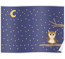 Night Owl (Landscape) Poster