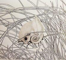Pygmy Possum  by Emma King