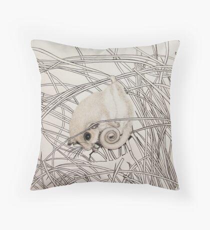 Pygmy Possum  Throw Pillow