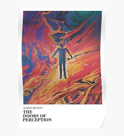 The doors of perception Poster