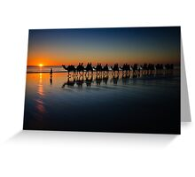 Cable Beach Camels Greeting Card